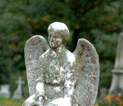 Кладбище, ангел